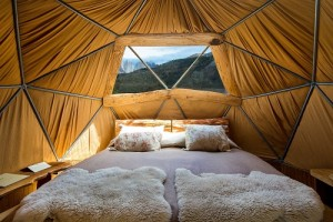 Standard Dome small